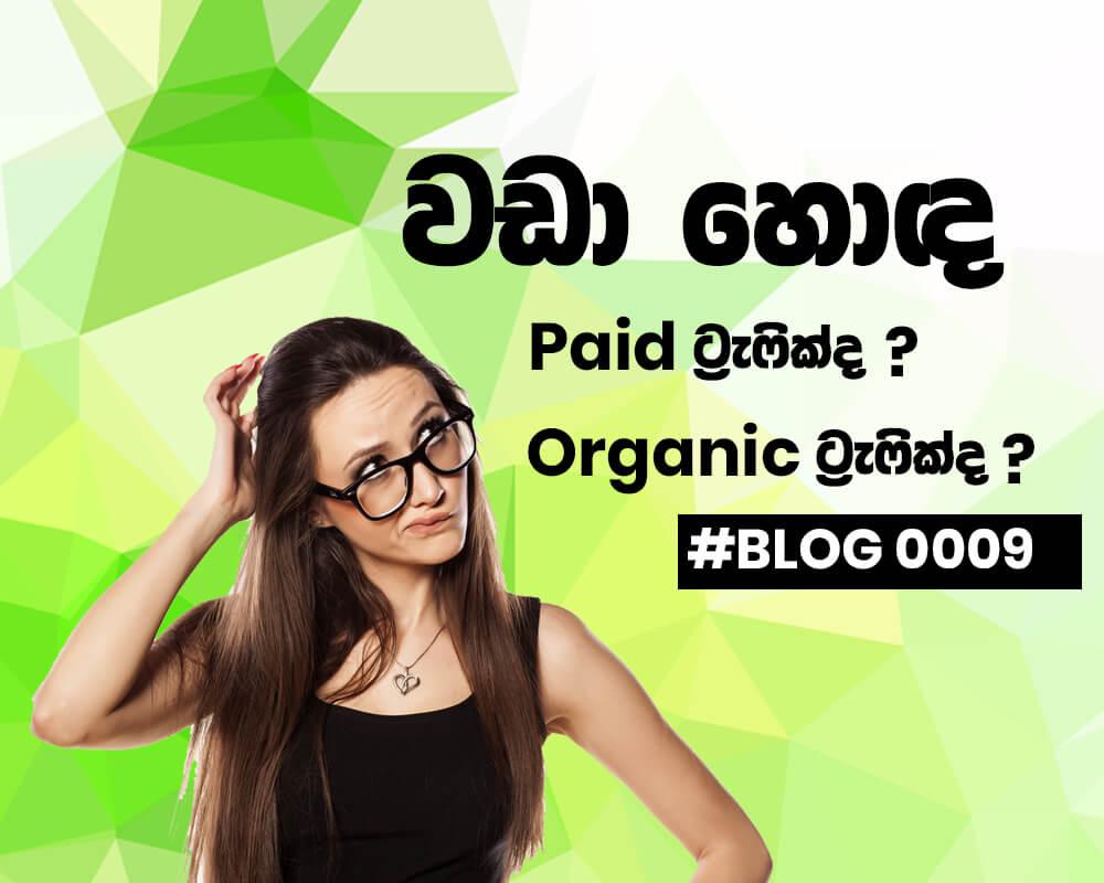 Paid Traffic vs Organic Traffic